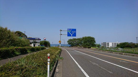 福井県道225号 サイクリング