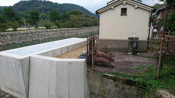 井川用水機場
